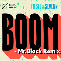Thumbnail for the Tiësto - BOOM (Mr. Black Remix) link, provided by host site