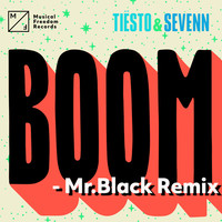 Thumbnail for the Tiësto - BOOM (Mr.Black Remix) link, provided by host site
