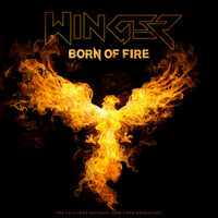 Thumbnail for the Winger - Born of Fire (Live 1993) link, provided by host site