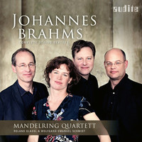 Thumbnail for the Johannes Brahms - Brahms: Complete String Sextets link, provided by host site