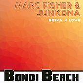 Thumbnail for the JunkDNA - Break 4 Love link, provided by host site
