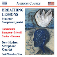 Thumbnail for the David Sampson - Breathing Lessons: Interlude 1: Settle for Being Ordinary? link, provided by host site