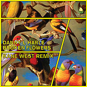 Thumbnail for the Danny L Harle - Broken Flowers (Kane West Remix) link, provided by host site