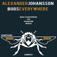 Thumbnail for the Alexander Johansson - Bugs Everywhere link, provided by host site