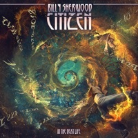 Thumbnail for the Billy Sherwood - By Design link, provided by host site