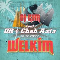 Thumbnail for the DJ Kim - Ça se passe link, provided by host site