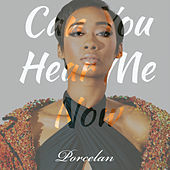 Thumbnail for the Porcelan - Can You Hear Me Now link, provided by host site