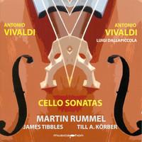 Thumbnail for the Luigi Dallapiccola - Cello Sonata in B-Flat Major, Op. 14, No. 1, RV 47 (arr. L. Dallapiccola for cello and piano): I. Largamente, ma Andante link, provided by host site