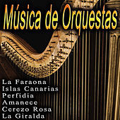 Thumbnail for the Orquesta Xavier Cugat - Cerezo Rosa link, provided by host site