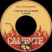 Thumbnail for the Orquesta Cosmopolita - Cha Cha Cha Con Mambo link, provided by host site