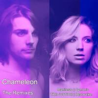 Thumbnail for the Manifesto - Chameleon (Manifesto Remix) link, provided by host site