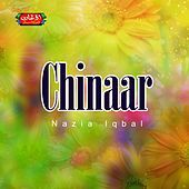 Thumbnail for the Nazia Iqbal - Chinaar link, provided by host site
