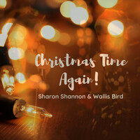 Thumbnail for the Sharon Shannon - Christmas Time Again! link, provided by host site