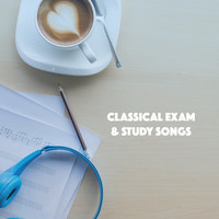 Thumbnail for the Exam Study Classical Music Orchestra - Classical Exam & Study Songs link, provided by host site