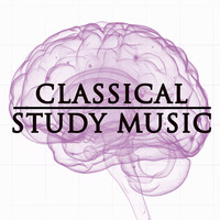 Thumbnail for the Classical Study Music - Classical Study Music link, provided by host site