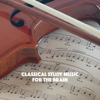 Thumbnail for the Classical Study Music - Classical Study Music For the Brain link, provided by host site