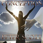 Thumbnail for the Peter Scott - Conception link, provided by host site