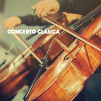 Thumbnail for the Exam Study Classical Music Orchestra - Concerto Clásica link, provided by host site