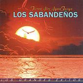 Thumbnail for the Los Sabandeños - Contigo en la Distancia link, provided by host site