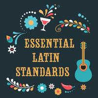 Thumbnail for the Edith Márquez - Contigo en la distancia link, provided by host site