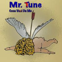Thumbnail for the Mr Tune - Cosa vuoi da me link, provided by host site