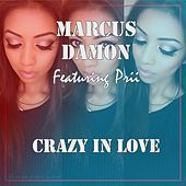 Thumbnail for the Marcus Damon - Crazy In Love link, provided by host site