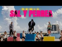 Thumbnail for the Sech - Sal y Perrea Remix (Video Oficial) link, provided by host site