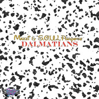 Thumbnail for the Mazzi - Dalmations link, provided by host site