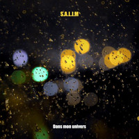 Thumbnail for the Salim - Dans mon univers link, provided by host site
