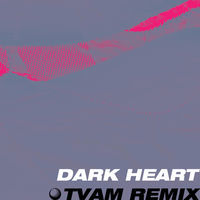 Thumbnail for the Tunng - Dark Heart (TVAM Remix) link, provided by host site
