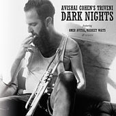Thumbnail for the Avishai Cohen - Dark Nights link, provided by host site