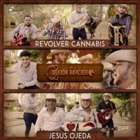 Image of Revolver Cannabis linking to their artist page due to link from them being at the top of the main table on this page