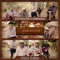 Thumbnail for the Revolver Cannabis - De Corazón Ranchero link, provided by host site