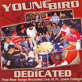 Thumbnail for the Young Bird - Dedicated link, provided by host site