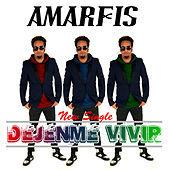 Thumbnail for the Amarfis y La Banda De Atakke - Dejenme Vivir link, provided by host site