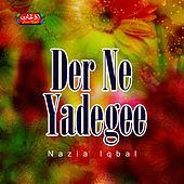 Thumbnail for the Nazia Iqbal - Der Ne Yadegee link, provided by host site