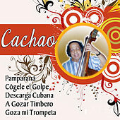 Thumbnail for the Cachao - Descargas link, provided by host site