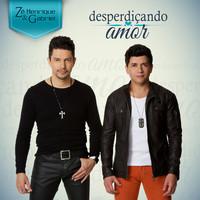 Thumbnail for the Zé Henrique & Gabriel - Desperdiçando Amor link, provided by host site
