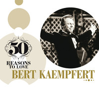Thumbnail for the Bert Kaempfert - Didn't We link, provided by host site