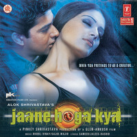 Thumbnail for the Shaan - Dil Dhak Dhak Karne Laga (Remix) link, provided by host site