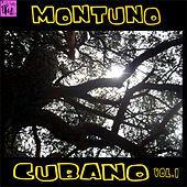 Thumbnail for the Orquesta Severino Ramos - Dime Adiós Carmelina (Son Montuno) link, provided by host site