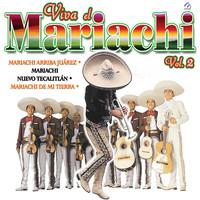Thumbnail for the El Mariachi de mi Tierra - Directo al Corazón (Por Unas Monedas) link, provided by host site