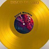 Thumbnail for the David Moreno - Disco de Oro: David Moreno link, provided by host site
