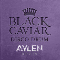 Thumbnail for the Black Caviar - Disco Drum [Aylen Remix] link, provided by host site