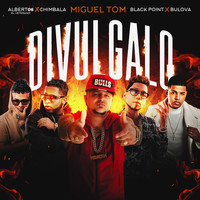 Thumbnail for the Migueltom - Divulgalo (Remix) link, provided by host site