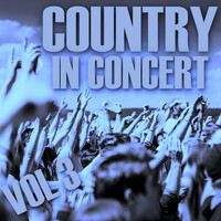 Thumbnail for the Luke Bryan - Do I - Live link, provided by host site