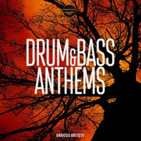 Thumbnail for the Various Artists - Drum & Bass Anthems link, provided by host site