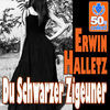 Thumbnail for the Erwin Halletz - Du Schwarzer Zigeuner (Digitally Remastered) link, provided by host site