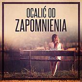 Thumbnail for the Krzysztof Krawczyk - Dziś prawdziwych Cyganów już nie ma link, provided by host site