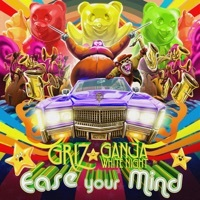 Thumbnail for the GRiZ - Ease Your Mind link, provided by host site